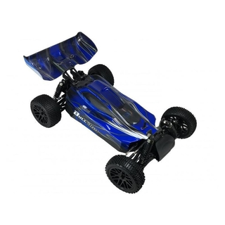 BLACKBULL 1:10 EP RTR Buggy [AVIO94307]